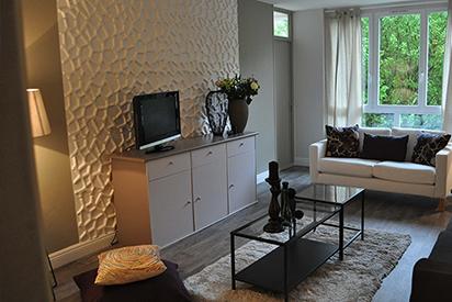 Habillage 3d Mur tv